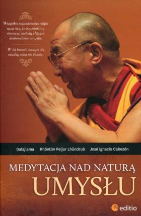 medytacja-nad-natura-umyslu-o20877